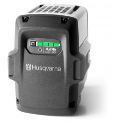 Bateria BLi100