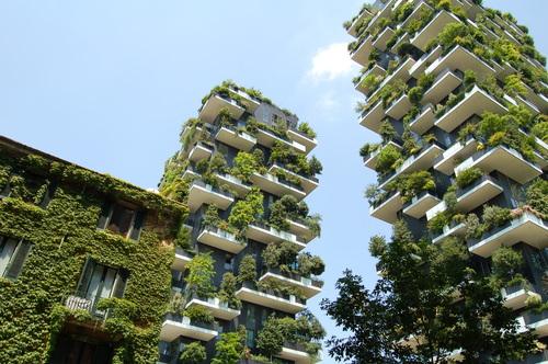 Jardins verticais, resposta à falta de espaço