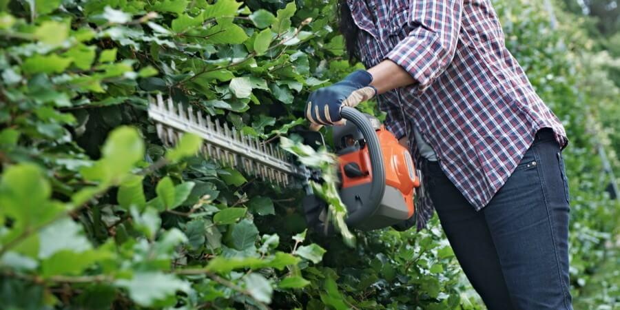 A manutenção de um corta-sebes Husqvarna: Como se afia o equipamento de corte