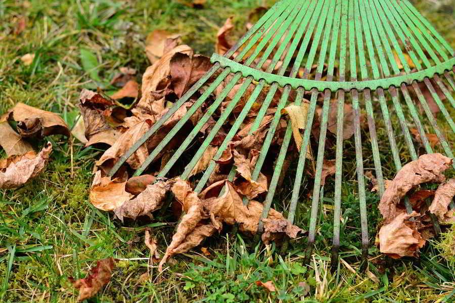 vassoura de metal de recolha de folhas mortas