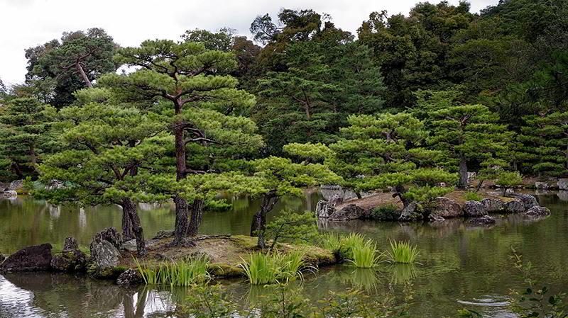 Jardim japonês de Kyoto