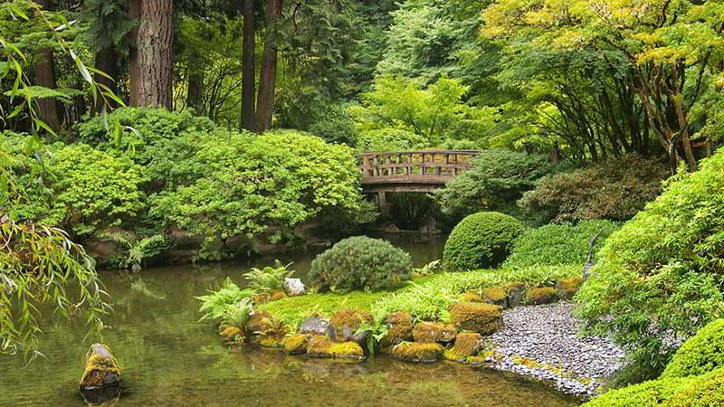 Jardim japonês, uma paisagem arquitetónica carregada de simbolismo