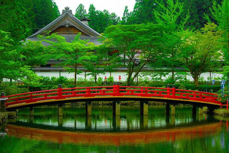 Ponte de jardim japonês